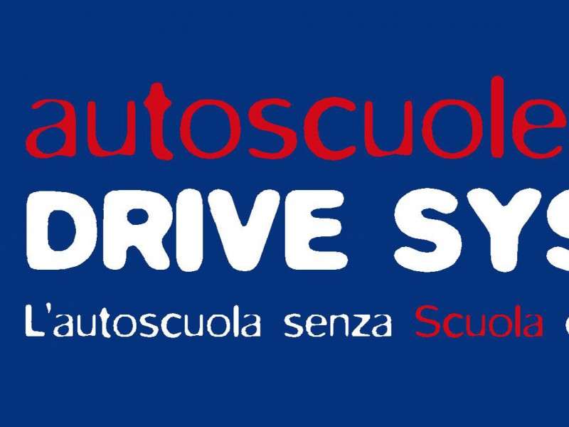 DRIVE SYSTEM